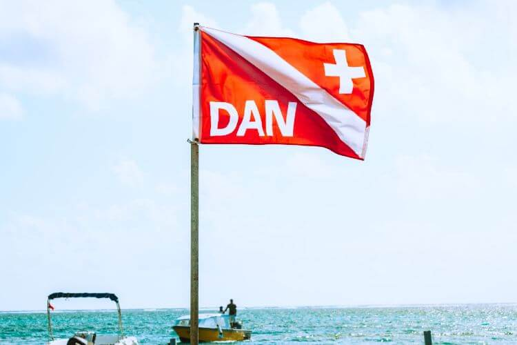what does a diver down flag look like