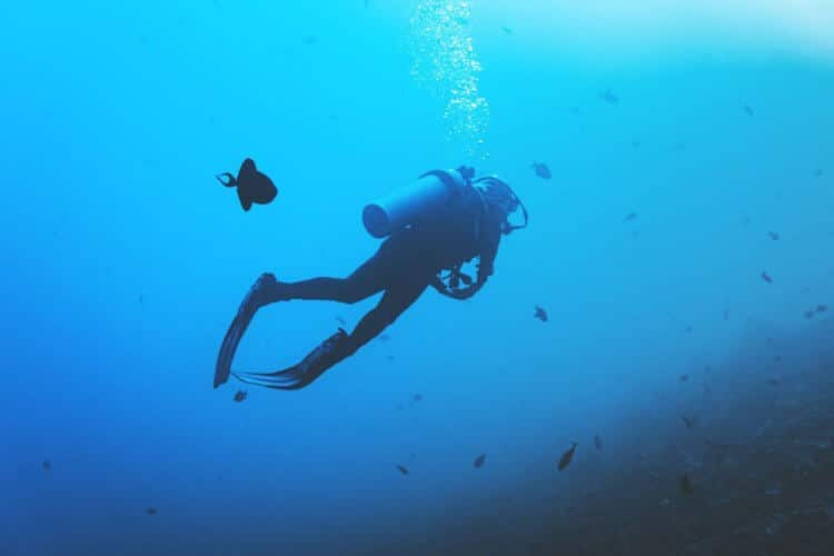scuba diving every day?