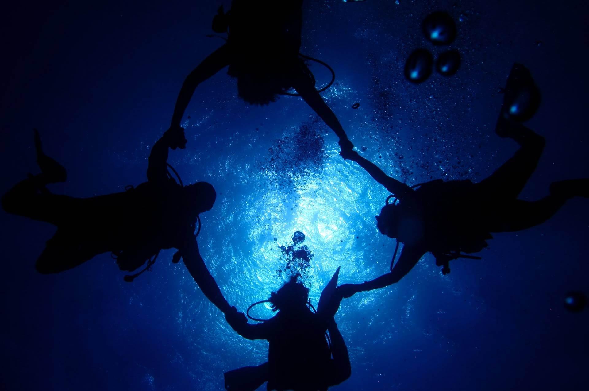 scuba divers swimming