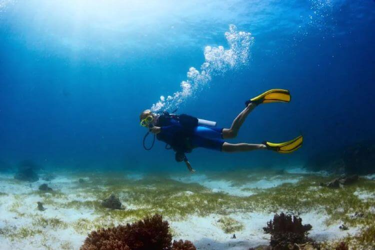 what to eat when scuba diving