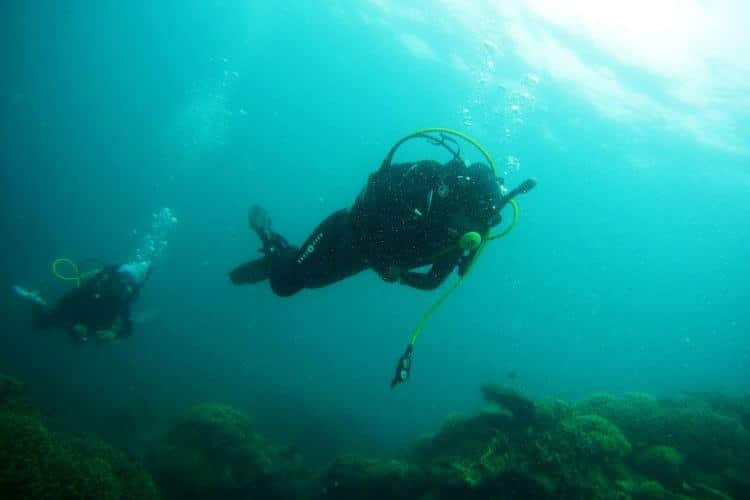 how scuba divers go up and down